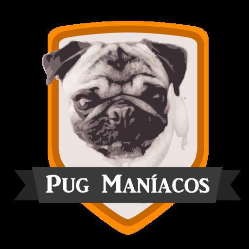 Pugmaníacos - Criação e comercialização especializadas em Pugs