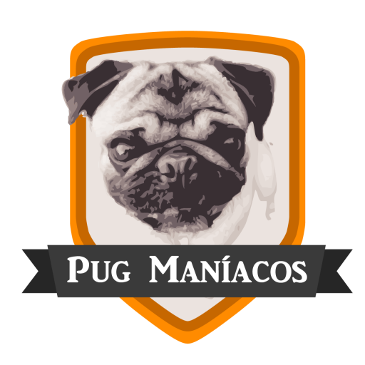 pug care game pug man 237 acos 7339